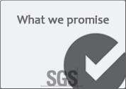 sgs繁體中文